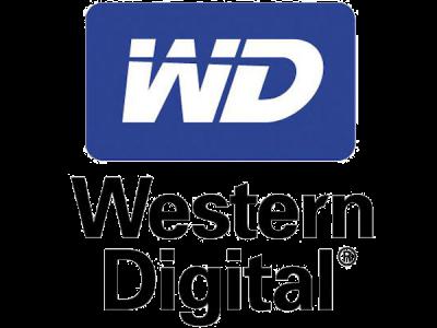 Western-digital-IT Square Egypt